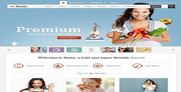 WordPress Theme - Sinitia WordPress Business Portfolio Theme